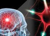 Нейродегенеративные и демиелинизирующие заболевания
